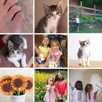 July Collage 12-20_WEB